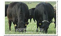 Boerderij Spanjer