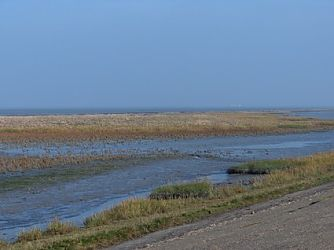 Bungalow Waddenzee 4 pers.