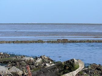 Bungalow Waddenzee 6 pers.